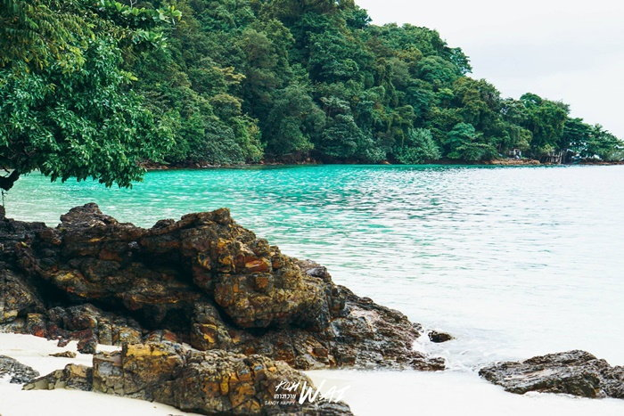 เกาะหวาย