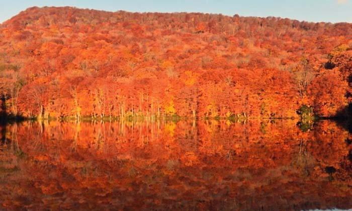 พาไปดูใบไม้เปลี่ยนสีสะท้อนบนผิวน้ำที่ใครได้เห็นเป็นต้องอยากเก็บภาพไว้เยอะๆแน่นอน