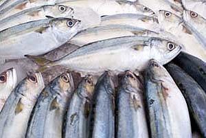 เทศกาลปลาทูอร่อยที่ท่าฉลอม สมุทรสาคร