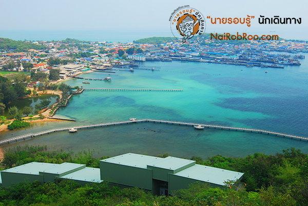 เปิดประตูเรียนรู้ ที่พิพิธภัณฑ์ธรรมชาติวิทยา เกาะและทะเลไทย