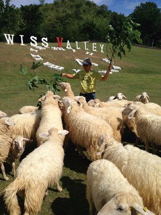 ท่องเที่ยวสไตล์พิศาลชวนพักที่สวนผึ้ง Swiss Valley Hip Resort