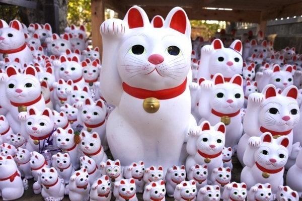 เอาใจคนรักแมว! วัดที่มีแต่ 'แมวกวัก' เต็มไปหมด ณ.วัด [goutokuji]