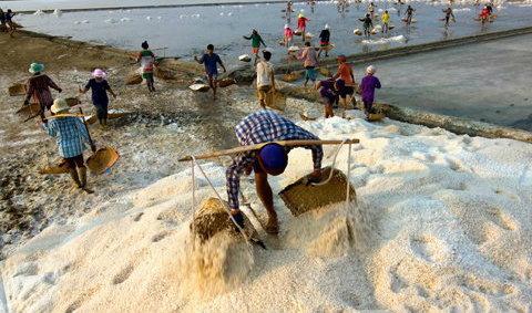 งาน Art of Salt  ถนนเกลือ บ้านแหลม จ.เพชรบุรี