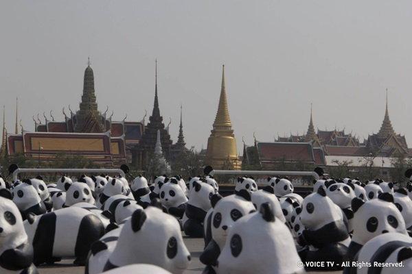 ประมวลภาพกองทัพแพนด้า '1600 Pandas+ World Tour in Thailand'