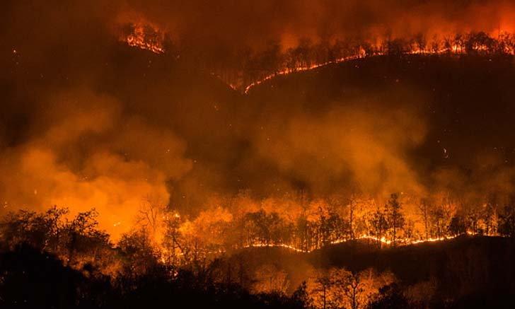 รวมช่องทางบริจาคสิ่งของและระดมทุนสู้ไฟป่าเชียงใหม่