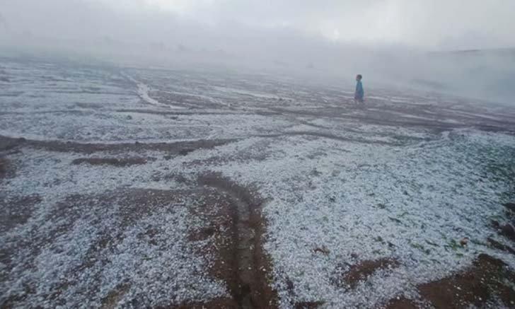 ภาพทิวเขาภูทับเบิกหลังพายุลูกเห็บตกนานเกือบชั่วโมง ขาวโพลนราวกับหิมะตก!