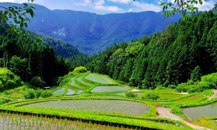 คามิคัตสึ เมือง Zero Waste แห่งแรกของญี่ปุ่น