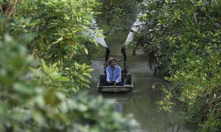 ล่องเรือเก็บส้มโออินทรีย์ ที่สวนไทยทวี