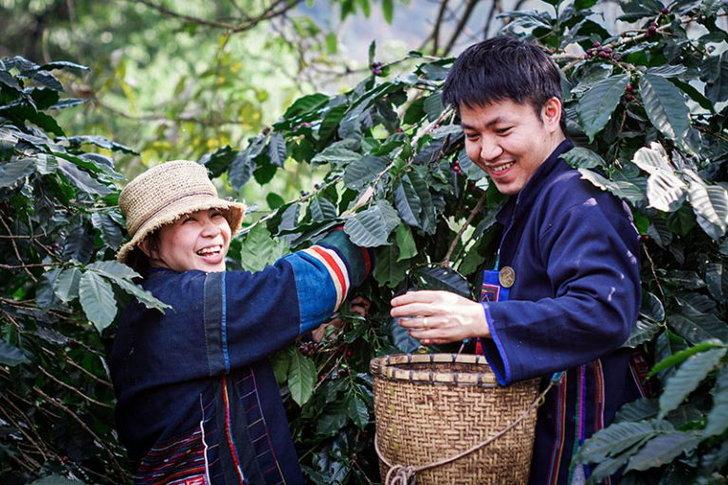 me-thai-coffee-3-768x512