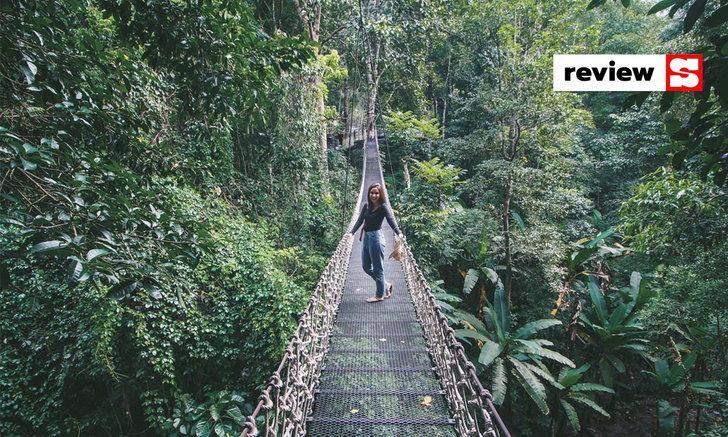 Teddu Coffee @แม่กำปอง คาเฟ่สุดชิลริมน้ำตก กับมุมถ่ายรูปสวยบนสะพานแขวนกลางป่า!