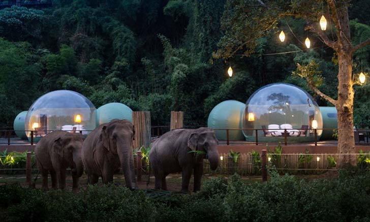 ททท. ปล่อยโปรเด็ด! ที่พัก โรงแรม รีสอร์ท ทั่วไทย ลดสูงสุด 80%