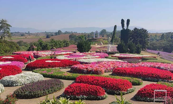 ฟลอร่า พาร์ค วังน้ำเขียว อาณาจักร์แห่งดอกไม้หลากสีสัน