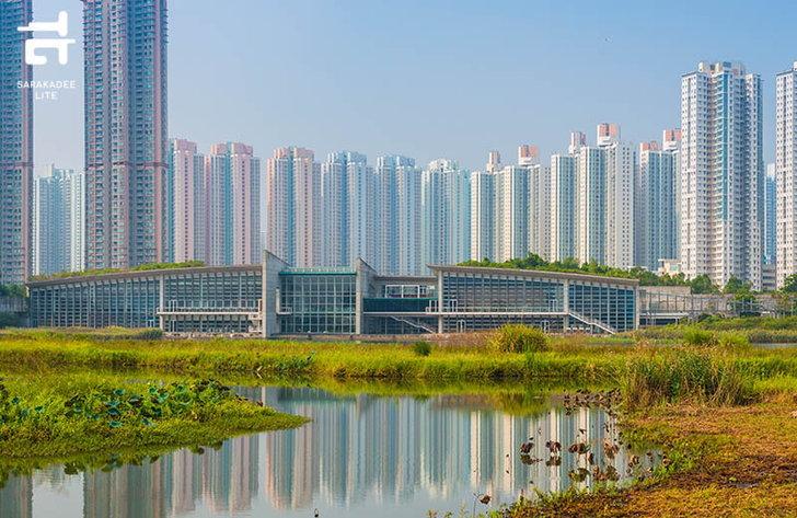 hk-wetland