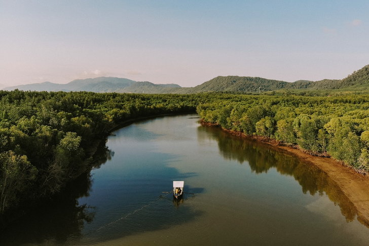 mangrovekohlanta