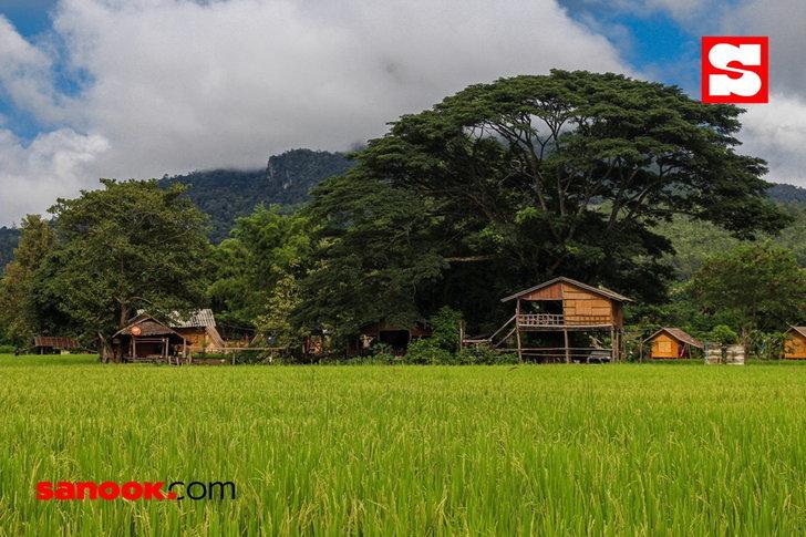 หมู่บ้านเมืองคอง