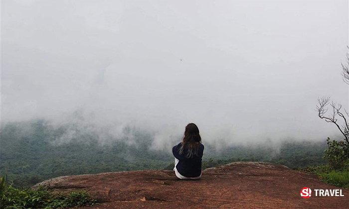มหัศจรรย์เดินป่าหน้าฝน ณ ภูหินร่องกล้า ความสวยงามของป่าที่ประเมินค่าไม่ได้ !!
