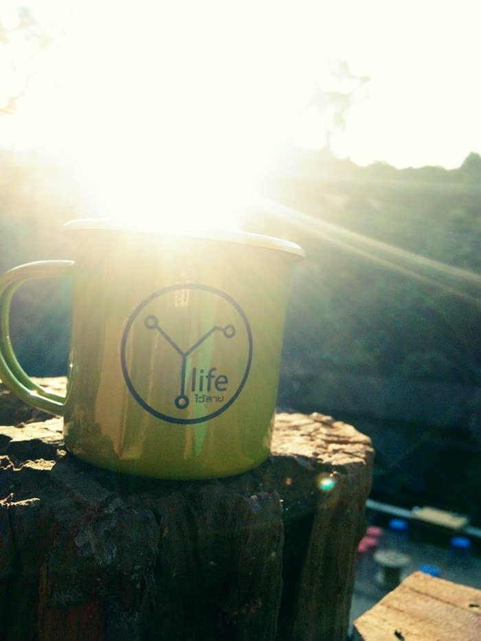 Y life ไว้ลาย cafe' แม่กำปอง