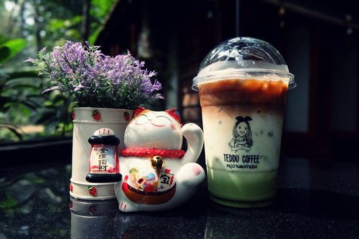 Teddu Coffee - Baansuphanbhum แม่กำปอง