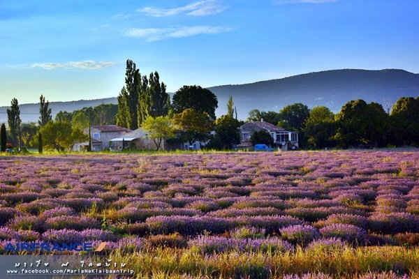Provence & Paris in summer - โพรว๊องซ์ ปารีส เที่ยวเองได้ง่ายๆไม่ง้อทัวร์ ตอน 2