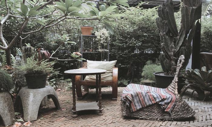"""KINN Kraffe & Craft""  คาเฟ่ลับๆ ที่ยกป่ามาไว้ในบ้านใจกลางลาดพร้าว"