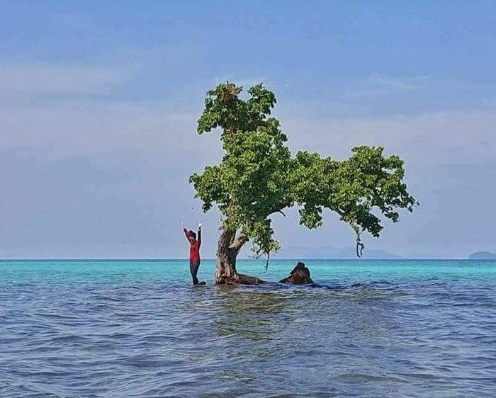 เกาะขายหัวเราะ