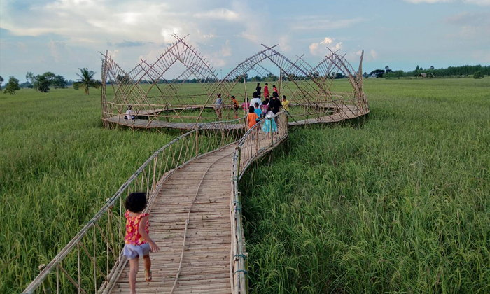 สะพานไม้ไผ่ดอกบัวกลางทุ่งนาแห่งโคราช แลนด์มาร์คแห่งใหม่ที่น่าไปถ่ายรูป