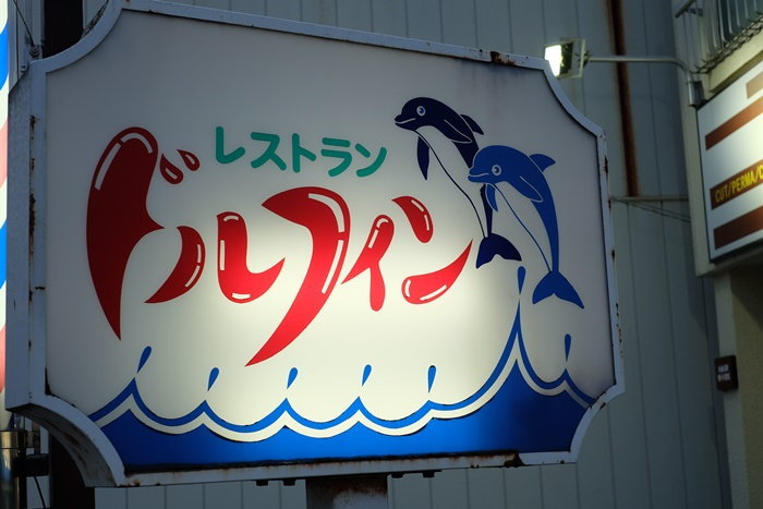 dolphin-1