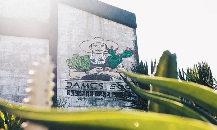 """เปิดโลก """"James500 Organic Farm Style"""" ของ James500 Fedfe หนุ่มสายโหดแต่อยู่ในโหมดรักต้นไม้"""
