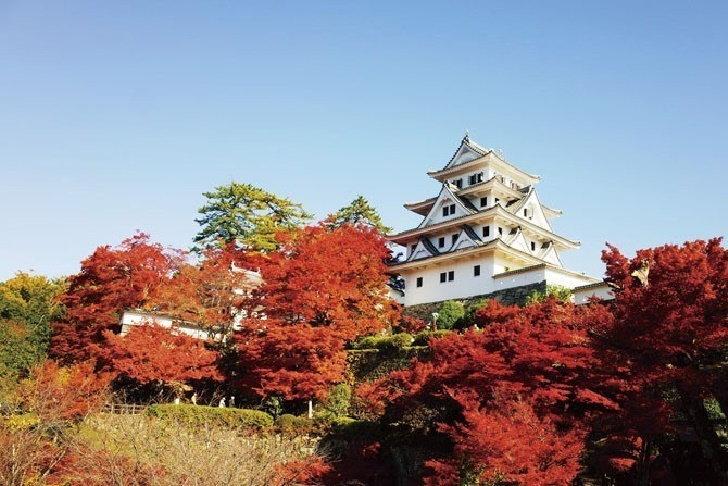 5-castle-in-autumn3(1)