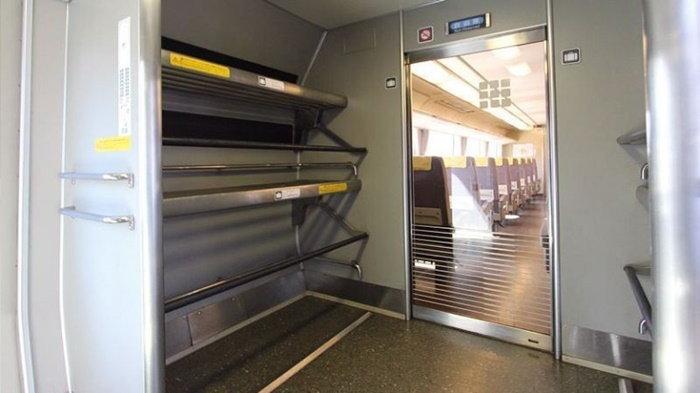 oversized-luggage-shinkansen_