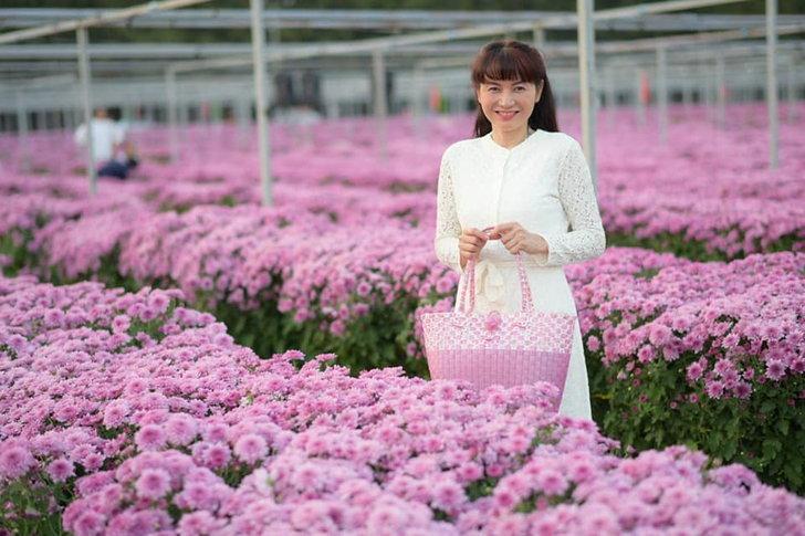 ทุ่งดอกเบญจมาศสวนดอกไม้ปทุมเจดีย์ จุดเช็กอินถ่ายภาพสวยหลังวัดธรรมกาย