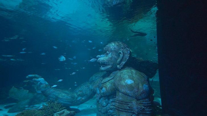 aquariaphuket2