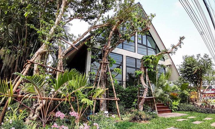 YouYen Garden Cafe (อยู่เย็น) คาเฟ่เปิดใหม่เอาใจคนชอบความเขียว