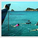 กิจกรรมดำน้ำชมปะการัง ที่เกาะเต่า