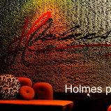 Holmes Public House
