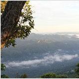 อุทยานแห่งชาติป่าหินงาม จ.ชัยภูมิ