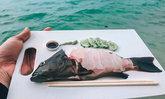 รีวิวไพรเวททริป ดำน้ำ ตกหมึก กินซาซิมิปลาทะเลสดกลางทะเล ที่เกาะกูด