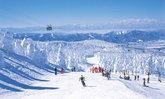5 สถานที่ท่องเที่ยวยอดนิยมของภูมิภาคโทโฮคุช่วงฤดูหนาว