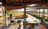 บ้านไร่ 9 ไม้ & ฟาร์มคาเฟ่ วิถีอินทรีย์