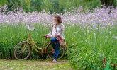 One Day Trip ปราจีนบุรี-นครนายก ชมทุ่งดอกหงอนนาค และวิวทุ่งนา ณ ภูกระเรี่ยง!!