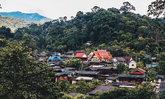 """""""บ้านป่าเหมี้ยง"""" หมู่บ้านกลางหุบเขา พักผ่อนแบบ Slow Life พักกายกับธรรมชาติ"""
