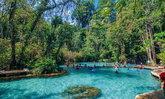 ป่าต้นน้ำบ้านน้ำราด โอเอซิสกลางป่าแห่งสุราษฎร์ธานี