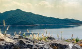 6 ที่เที่ยว ใกล้ชิดธรรมชาติ ไม่ไกลกรุงเทพฯ