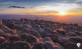"""""""ภูหินร่องกล้า"""" 2 วัน 1 คืน นอนหนาว ล่าหมอก กอดธรรมชาติ"""