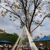 เที่ยวเมืองไทย 2560