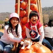 ครอบครัวคุณ Gump Sun Sun จิม ทอมป์สัน ฟาร์ม อำเภอปักธงชัย จังหวัดนครราชสีมา