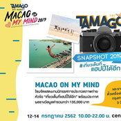 TAMAGO Art Market 2019 พาเที่ยวมาเก๊าไปกับตลาดนัดงานคราฟต์ใจกลางกรุง