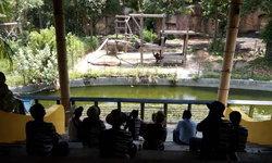 เผยภาพน่ารัก สวนสัตว์ขอนแก่นบรรเลงเพลงให้ลิงฟังคลายเครียด