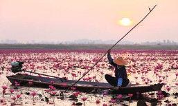 เทศกาลท่องเที่ยวทะเลบัวแดงอุดรธานี 2563 เริ่มขึ้นแล้วในช่วงนี้