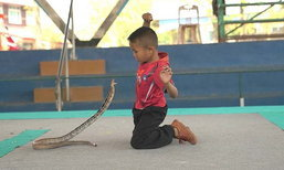 หมู่บ้านงูจงอางขอนแก่น ประสบปัญหาหนักเลิกเลี้ยงงูกว่าครึ่ง